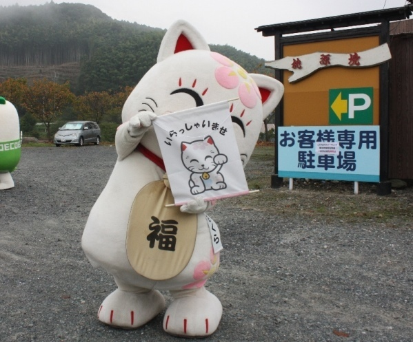 IMG_4811 追い出し猫さくら2.jpg